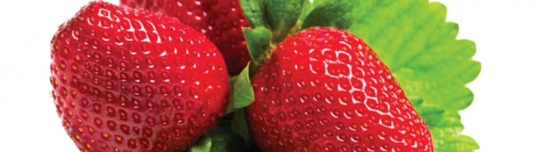Der Duft der Erdbeere ist einzigartig und erst recht ihr Geschmack. Genießen Sie diese das ganze Jahr über.
