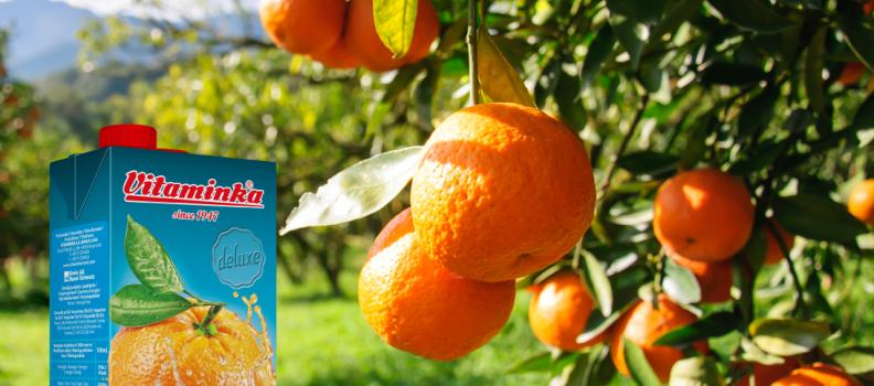 Orange Deluxe
